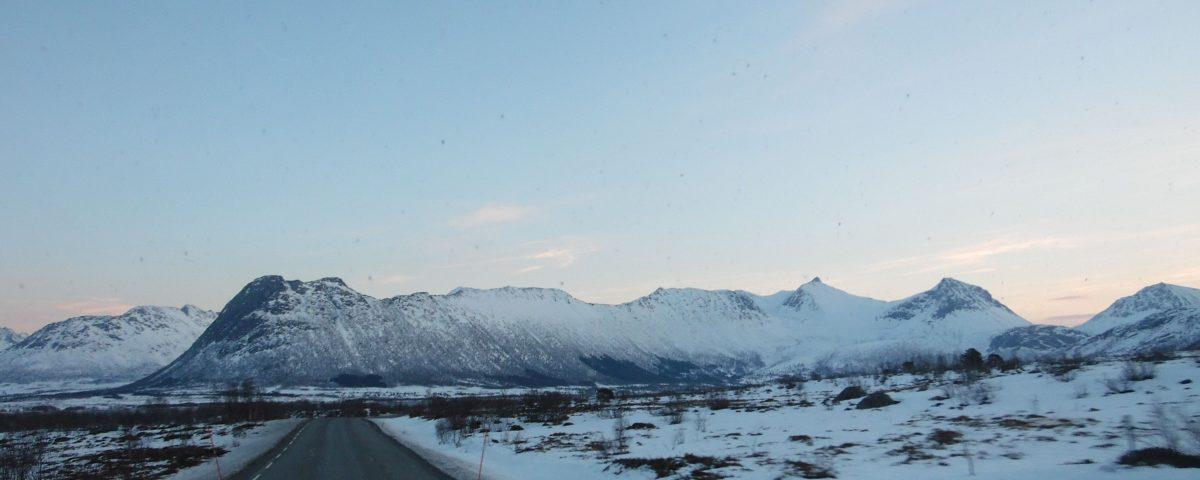 scandinavian rost3